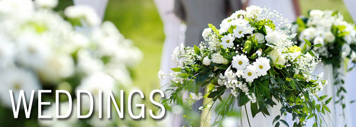 Aberdeen Wedding Flowers Chicago : Florist aberdeen flower fashions flowers