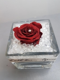 Infinity Red Rose in Glass